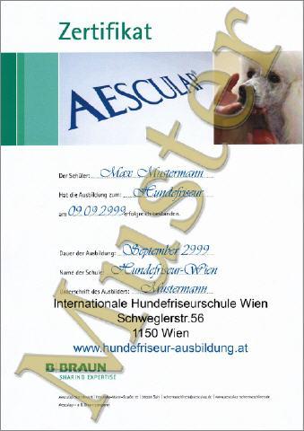 Hundefriseur Ausbildung Zertifikate